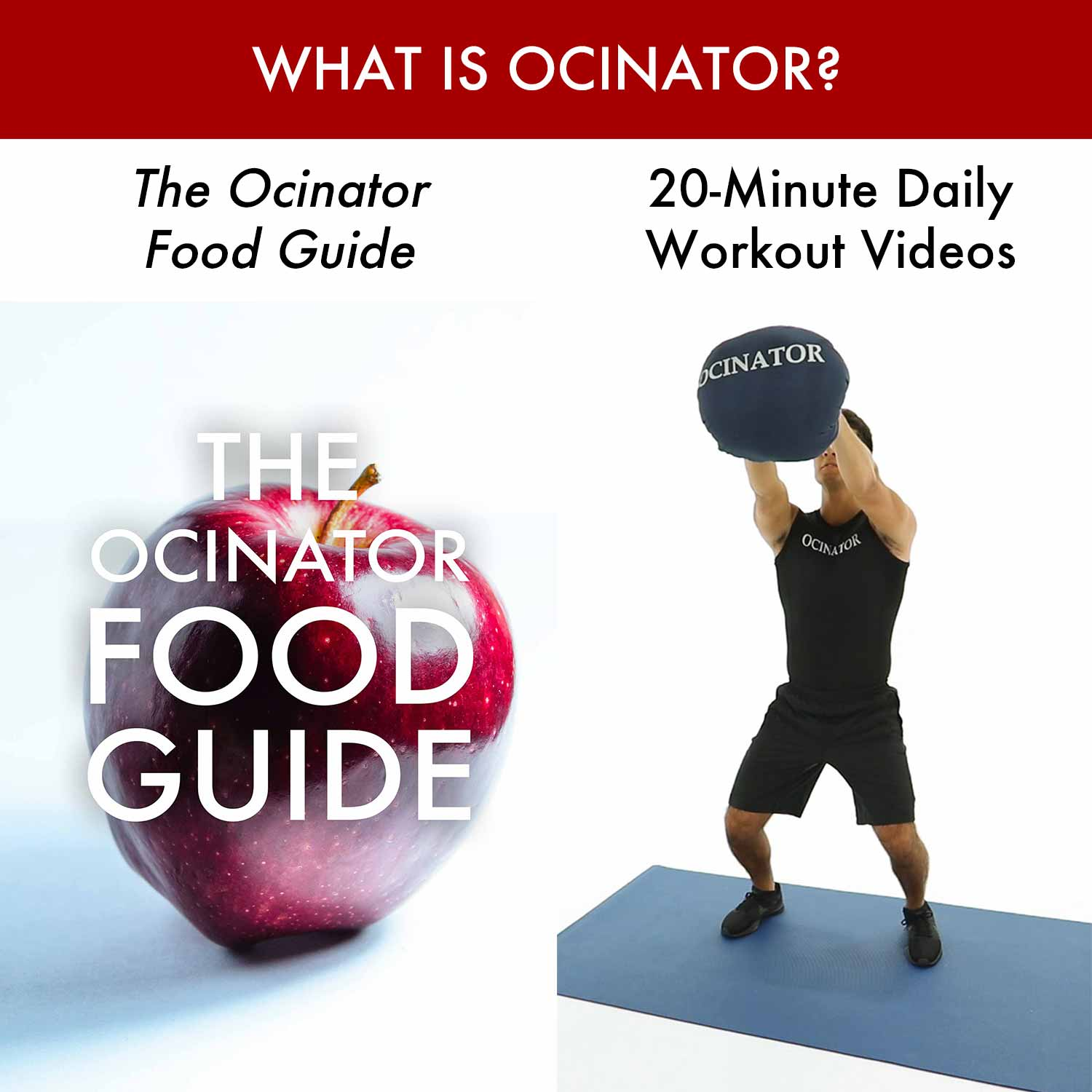 What Is Ocinator_